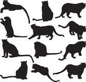 Leopard or panther silhouette contour Stock Photos