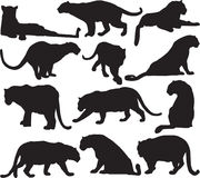 Leopard or panther silhouette contour Royalty Free Stock Photo