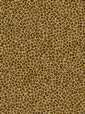 Leopard pattern. Leopard skin computer generated Royalty Free Stock Image
