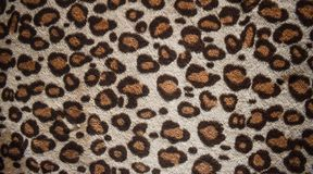Leopard pattern design, trendy natural fur background, Leopard fur pattern seamless real hairy texture. Fashion, trend 2019. Leopard pattern design, trendy stock image