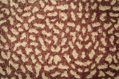 Leopard pattern. On fabric blanket Stock Images