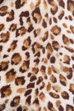 Leopard pattern. On fabric blanket Royalty Free Stock Images