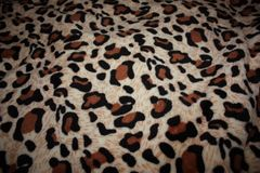 leopard pattern on fabric blanket stock photography