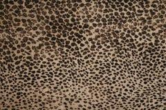 Leopard pattern fabric. Close-up stock image