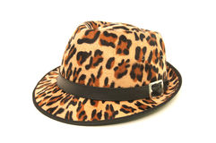 Leopard pattern hat. Leopard pattern hat isolated on white background royalty free stock images
