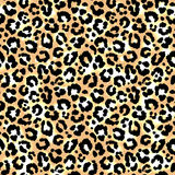Leopard pattern. Stock Photo