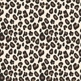 Leopard pattern. Seamless vector background. For design Stock Photos