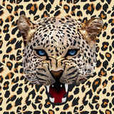 Leopard pattern vector. Head leopard spotted pattern background Stock Photo
