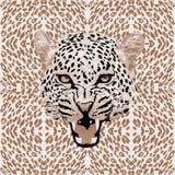 Leopard pattern vector. Leopard print pattern. Abstract leopard pattern vector royalty free illustration