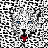 Leopard pattern vector. Leopard print pattern. Abstract leopard pattern vector stock illustration