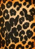Leopard pattern Stock Photos