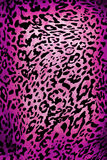 Leopard pattern Royalty Free Stock Photos