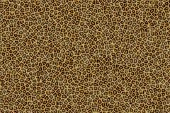 Leopard-Pelz Stockfoto