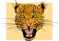 Leopard Portrait. Angry wild big cat head. Cute face of African Aggressive predator with bared teeth in cartoon style stock illustration
