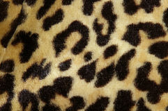 Leopard print royalty free stock images