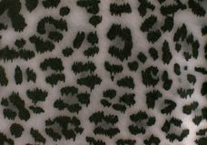 Leopard print background. Full flame stock photos