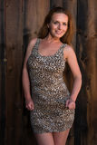 Leopard print dress Stock Image