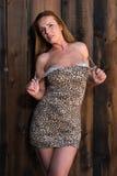 Leopard print dress Stock Images