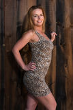 Leopard print dress Stock Photography