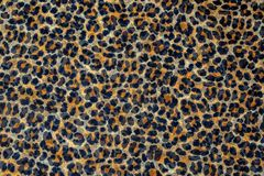 Leopard print, fabric pattern. Background texture, wild animal Pattern royalty free stock photo
