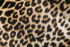 Leopard print fabric texture. Closeup of the leopard print fabric texture royalty free stock photo