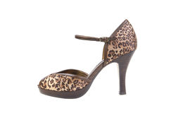 Leopard print high heel. Exotic leopard print high heel shoe on a white background royalty free stock photos