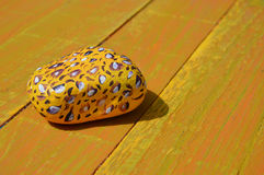 Leopard print painted stone on wood background. Leopard print painted stone on golden yellow wood panel background royalty free stock image