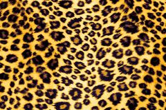 Leopard Print. Pattern Fabric Close up royalty free stock image
