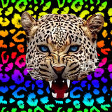 Leopard print pattern. Repeating seamless vector Royalty Free Stock Photos