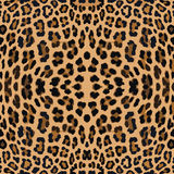 Leopard print pattern skin. Repeat animal pattern stock illustration
