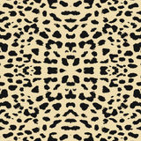 Leopard print pattern skin. Repeat animal pattern Royalty Free Stock Photos