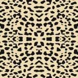Leopard print pattern skin Royalty Free Stock Photos