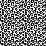 Leopard print seamless background pattern. Black and white. Vector illustration Leopard print seamless background pattern. Black and white stock illustration