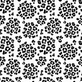 Leopard print seamless background pattern. Black and white. Vector illustration Leopard print seamless background pattern. Black and white Stock Photos