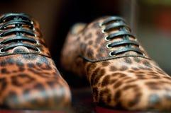 Leopard Print Shoe. A closeup pair of leopard print leather shoe royalty free stock image