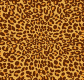Leopard print and skin background. Vector Stock Image