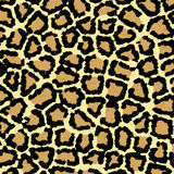 Leopard print texture Stock Photography