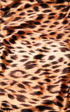 Leopard print texture royalty free stock image