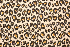 Leopard print textured background Royalty Free Stock Image