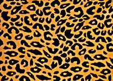 Leopard Print. Yellow and black leopard print background stock illustration