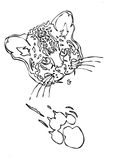 Leopard puma or jaguar face with print of paw Royalty Free Stock Image