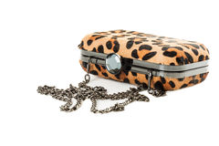 Leopard purse isolated on white background Stock Images