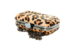 Leopard purse isolated on white Stock Photos