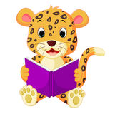 Leopard reading book Royalty Free Stock Image