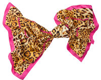 Leopard  scarf Royalty Free Stock Photo