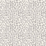 Leopard seamless pattern design,  background Stock Photos