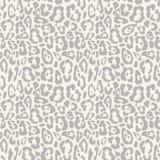 Leopard seamless pattern design,  background Stock Photos
