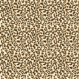 Leopard seamless pattern Royalty Free Stock Photos
