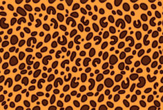 Leopard seamless pattern vector. Leopard skin seamless pattern  illustration Royalty Free Stock Photography