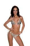 Leopard Sequined  Bikini Royalty Free Stock Photo